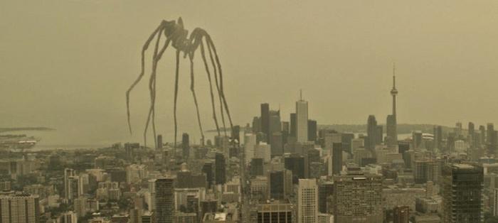 意味不明な蜘蛛