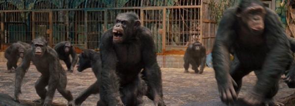 猿の惑星:創世記(ジェネシス)見所