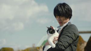 映画旅猫リポートロケ地、撮影場所(福士蒼汰目撃情報アリ)