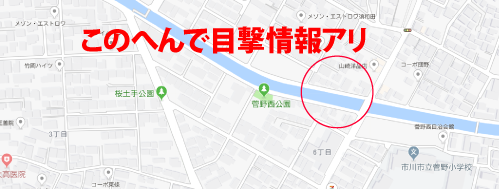億男ロケ地『市川市立菅野小学校周辺』