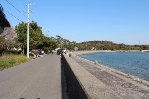 ねことじいちゃんロケ地『佐久島古代製塩遺跡前の海沿い』