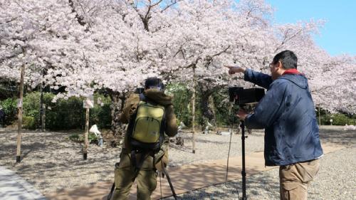 ある町の高い煙突ロケ地『熊野神社撮影シーン』
