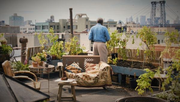 ニューヨーク眺めのいい部屋売ります『屋上からの景色』