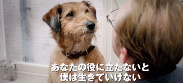 ニールの愛犬デニス
